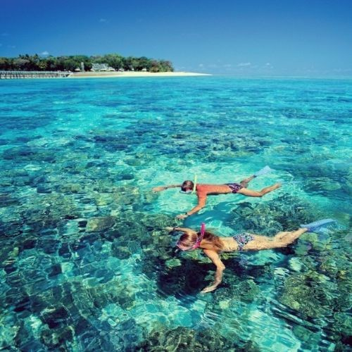 cairns-snorkelling